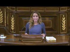 Derogación Prisión permanente revisable PNL del PNV Congreso Diputados