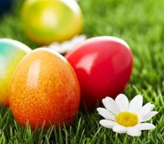 How To Dye Easter Eggs Naturally | ifood.tv