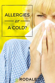 An allergy expert weighs in on why your spring allergies always make you sick.