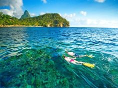 Castries Snorkel Adventure with Beach Time at Anse Chastanet Resort in St Lucia in Saint Lucia Central America Jade Mountain, Best All Inclusive Resorts, Hotels And Resorts, Dream Vacations, Vacation Spots, Caribbean Vacations, Yacht Vacations, Dream Trips, Caribbean Cruise