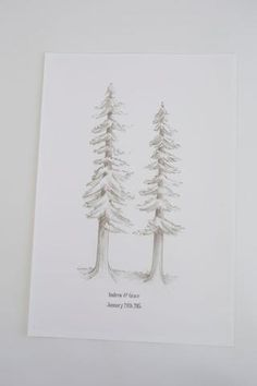 Redwood Trees - My Guest Book - 1