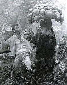 """Site devoted the author's wonderful memories of being a """"Monster Boomer"""" and child of the who happily grew-up during the Golden Age of fantasy, monster and science-fiction films. Scary Films, Sci Fi Horror Movies, Horror Stories, Science Fiction, Japanese Monster, Funny Photography, Famous Monsters, Classic Monsters, Vintage Horror"""