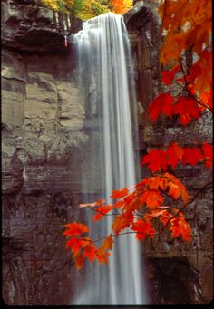 Fall at Taughannock by thenels  -Cayuga lake in Finger Lakes Region of New York State, USA