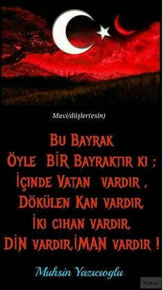Turkey Flag, Turkish People, Ottoman Empire, Karma, Istanbul, Best Friends, History, Movie Posters, Google Google