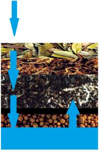 An overview of the strata of vivarium substrates