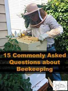 Commonly Asked Questions about Backyard Beekeeping Fry Sauce and Grits | Bees and Beekeeping Tips and Recipes | Pioneer Settler | Beeswax Uses, Recipes, and Rendering Tips at pioneersettler.com | #pioneersettler Bee Hives, Raising Bees, Raising Chickens, Wild Honey, Fry Sauce, Honey Bees, Bees Knees, Buzzy Bee, Bee Farm
