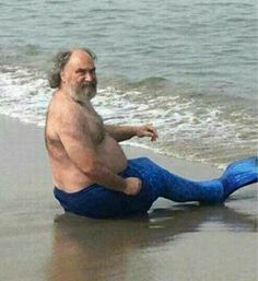 He cute tbh uwu memes dankmemes memesdank trashmemes garbage dankmemesdaily thelittlemermaid mermaid mermaids Really Funny Memes, Stupid Funny Memes, Haha Funny, Memes Humor, Reaction Pictures, Funny Pictures, Memes Lindos, Mood Pics, Cursed Images