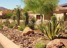 Image result for mojave desert home landscaping