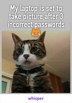 My laptop is set to take picture after 3 incorrect passwords 😹