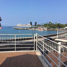 View from the ywam base #kona #ywam #hawaii #2k16 #tropical #rsdk #warmseashorttrees #opposites #confusion #goodtimes by cayledillon http://bit.ly/dtskyiv #ywamkyiv #ywam #mission #missiontrip #outreach