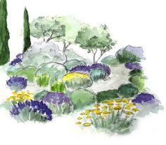 Jardin méditerranéen, jardin sec, conseil plan jardin - garden design