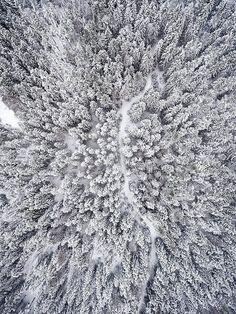 Forest Path Winter Snow AMAZING PHOTO from above   von Evgeni Ali