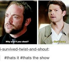 The most popular question of the show Supernatural Jokes, Spn Memes, Supernatural Pictures, Winchester Boys, Castiel, Crowley, Super Natural, Superwholock, Fangirl