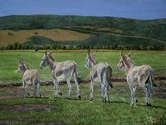 Oil on canvas. 61 x 46 cm