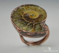 Ammonite Fossil Statement Ring This ring is made to order and each is truly a one of a kind creation! This unique focal piece is created with Ammonite fossils. These fossils are about 200 million year