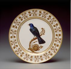 Plate from the South American Birds Service (1819 - 1820)  / Sèvres Porcelain Manufactory | Hillwood Estate, Museum & Gardens