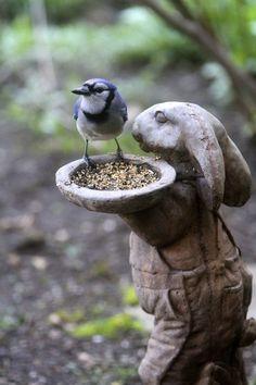 Beautiful Birds, Beautiful Gardens, Tier Fotos, Garden Statues, Outdoor Statues, Garden Ornaments, Dream Garden, Yard Art, Garden Inspiration