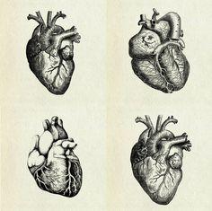 Human heart prints