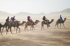 It's no secret that small group travel is becoming all the rage. Small group travel is perfect for anyone who wants to a once in a lifetime adventure. Visit Morocco, Marrakech Morocco, Morocco Travel, Travel Images, Travel Pictures, Amsterdam, Desert Tour, Desert Days, Photos Voyages