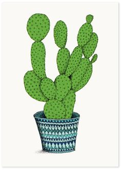 from 'Cacti Series' by Annie Davidson