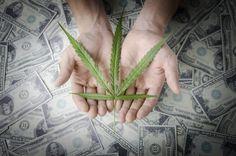 米政府、合法大麻で年165億円の医療費を節約 #医療 #大麻 #Health