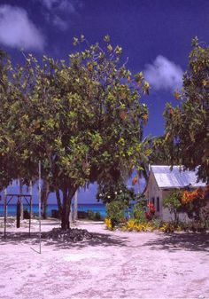 Funafuti is an atoll that forms the capital of the island nation of Tuvalu. It has a population of 6,194 people (2012 Population  Housing Census Preliminary Analytical Report), making it the most populated atoll with 57.2 percent of Tuvalu.