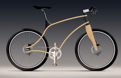 Don't know how it rides, but it looks so unusual. Bent Plywood (James Thomas)