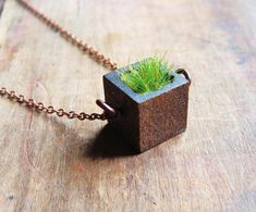 Wood and Grass Necklace Square Bezel Planter Necklace by aptoArt Wooden Necklace, Tree Necklace, Wooden Jewelry, Jewelry Art, Jewelry Accessories, Jewelry Design, Carrera Lunette, Concrete Jewelry, Unisex Gifts