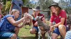White Ridge Farm | Brisbane Animal Farm | Moreton Bay Region