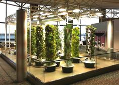 Aeroponic Tower Garden Food Growing System and Season Extender accessories