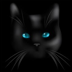 Black Cat cat art black drawing painting illustration halloween