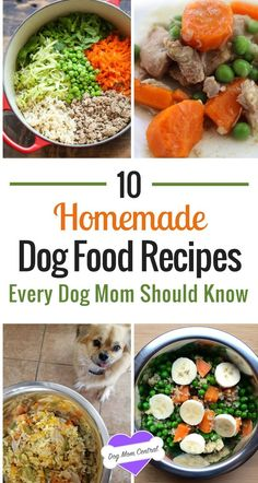 To get inspired, here are 10 easy and nutritious dog food recipes you can make at home right now.