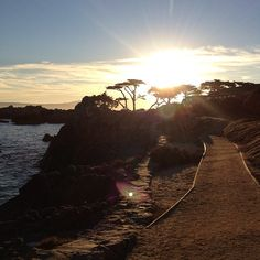 The Monterey Recreational Trail, Photo by inkedlover80