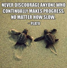 Never discourage anyone who continually makes progress, no matter how slow. #Progress #SlowProgress #Discourage #picturequotes #Plato View more #quotes on http://quotes-lover.com