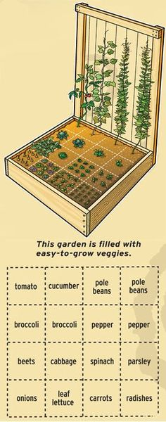 Nice small space garden. Would like to try it out.