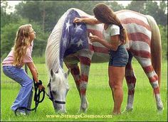 NOW THAT'S PATRIOTISM !!!! HORSE SENSE?