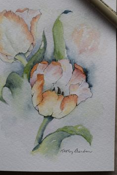 Peach tulips Watercolor Painted Card-original or by SunsetPeonies Watercolor Cards, Watercolour Painting, Watercolor Flowers, Watercolors, White Hibiscus, Paint Cards, Painting Inspiration, Flower Art, Hand Painted
