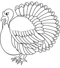 Kindness Coloring Pages Images Wild TurkeyColoring