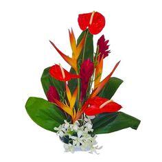 Honokohau Tropical Hawaiian Flowers -- Want additional info? Click on the image.