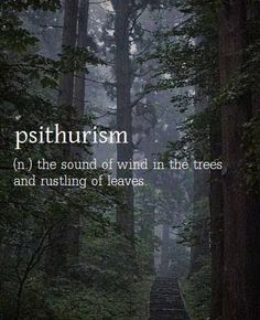 psithurism - sound of wind in the trees.learning new words that fit. The Words, Fancy Words, Weird Words, Pretty Words, Beautiful Words, Cool Words, Trees Beautiful, Beautiful Life, Unusual Words
