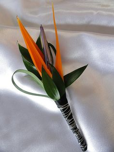 Bird of Paradise Floret, Italian Ruskus and Lily Grass; Black satin stem wrap with a Silver wire detail | Walden Floral Design