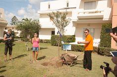 VISION VOYAGE Newlyweds planting their wish tree