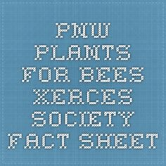 PNW Plants for Bees - Xerces Society Fact Sheet