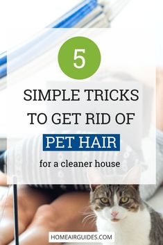 Find out how to get rid of pet hair using these simple tricks at home. Pet fur doesn't have to clutter up your furniture, floors or clothing any longer. Take look to learn how to remove pet air completely from your house. Pet Dander, Pet Odors, Diy Cleaning Products, Cleaning Hacks, Cleaning Schedules, Cleaning Recipes, Cleaning Solutions, Pet Products, Young Living
