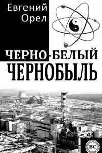30 лет назад в Чернобыле произошла страшная катастрофа. О разрушениях и ликвидации последствий написано много. Но сегодня мы хотели бы предложить Вам совсем другую книгу, в которой события 26.04.1986 освещаются глазами простого обывателя. В этом документально-публицистическом очерке находят отражение порядочность и нечестность, трагедия и любовь в поставарийный период - одним словом, жизнь во всей сложности и многообразии. Жизнь ВО ВРЕМЯ и ПОСЛЕ. Пусть небо над нами всегда будет мирным!