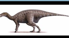 Mantellisaurus