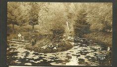 Chelsea Michigan, Norfolk County, Plait, Montreal, Ontario, Postcards, Grass, Canada, World