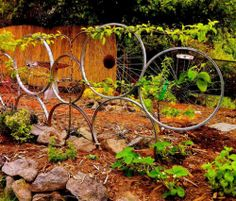 10 Simple Gardening Ideas. Look at the photo of the tin cans garden lights! Such a great idea!