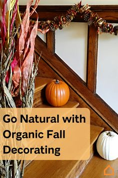 Bring the feeling of fall into the home with these organic decorating tips.
