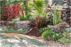 Southern California Pocket Garden by Laura Eubanks. House Landscape, Landscape Design, Garden Design, Mid Century Landscaping, Pocket Garden, Front Yard Plants, Garden Inspiration, Garden Ideas, Drought Tolerant
